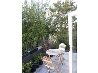 Fantastic flat in Peckham/Camberwell/Denmark Hill, Roof Terrace and Shared Garden!