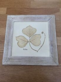 4 x Marks & Spencer wall plaques
