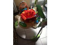 Rani forest jumperoo for sale