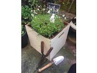 Fab Wooden Garden container