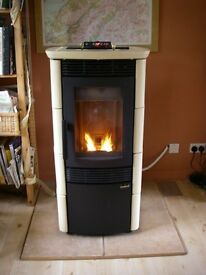 Wood pellet stove and flue