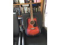 Arie Acoustic guitar 🎸