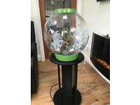 Bio orb fish tank and stand