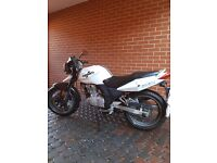 125cc Sinnis Stealth