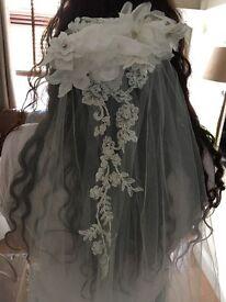 Justin Alexander wedding veil