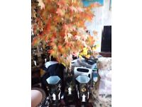 Tall artificial Acer with mother of pearl pot forsale