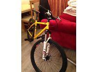 Genesis io I'd mountain bike rear gear hub