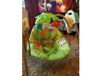 Swing Seat and Play Mat