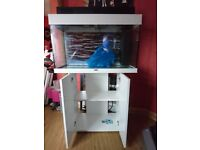 jewel rio 125 litre fish tank with stand and accessories