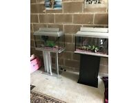2 x 60l fish tank both full set up with stand heater light filter gravel ornament lid all work in pi
