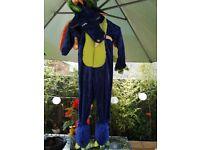 Dragon kids costume 3-4 years