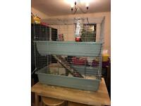 Two gorgeous guinea pigs and cage