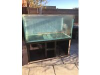 5 ft fish tank