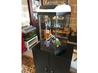 60l hexagonal fish tank very nice and full set up with filter lid light lid black gravel ornament