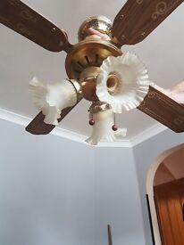 Fan light
