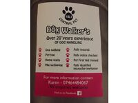 K & j central pet dog walker's