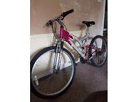 Apollo AL6000 mountain bike