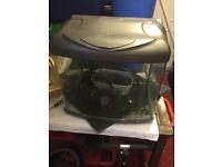 Fish aquarium complete with pump, gravel, net and plant, £20
