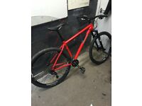 29er Large Pinnacle rammin 5