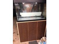 Fluval Roma 125 marine tropical cold water fish tank aquarium with setup