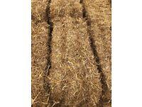 Quality Straw Bales