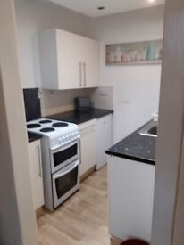ONE BEDROOM FLAT LEITH EH7 5LQ