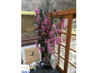 Beautiful Imitation Wisteria Tree . Only £60