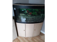large fish tank and unit