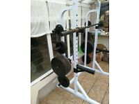 247.5kg cast iron olympic weight and bar