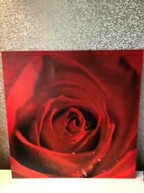 Four large red rose canvas / pictures wall hung