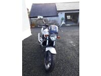 2004 HONDA CBF 500-4 TOP CLASS CONDITION ONLY 6300 MILES