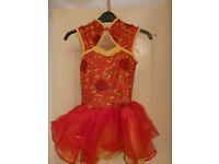 5 Girls Dance Costumes and Tutus