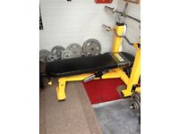 Olympic powertec bench and weights and bars