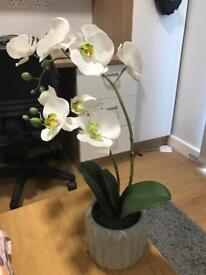 Fake decorative orchid