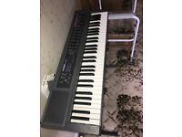 Electric Organ Casio ctk-450