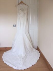 Phoenix Gowns wedding dress and lace veil
