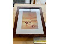 John Lewis pair of African Savannah framed Prints