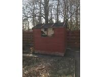 Garden shed 7 ft x 4 ft , good condition , collection only