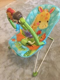Baby Bouncer (Fisher-price Precious Planet Playtime)