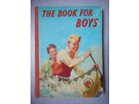 THE BOOK FOR BOYS.
