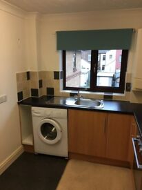 1 Bedroom Flat in Norwich NR1 to Rent