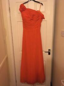 Ball Gown / Bridesmaid Dress x 2