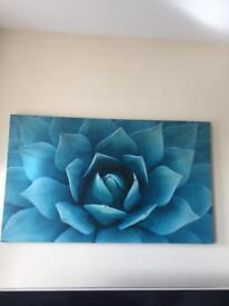 Teal Canvas