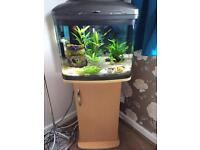 Fishtank & stand open to offers