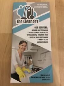 Professional cleaning services.