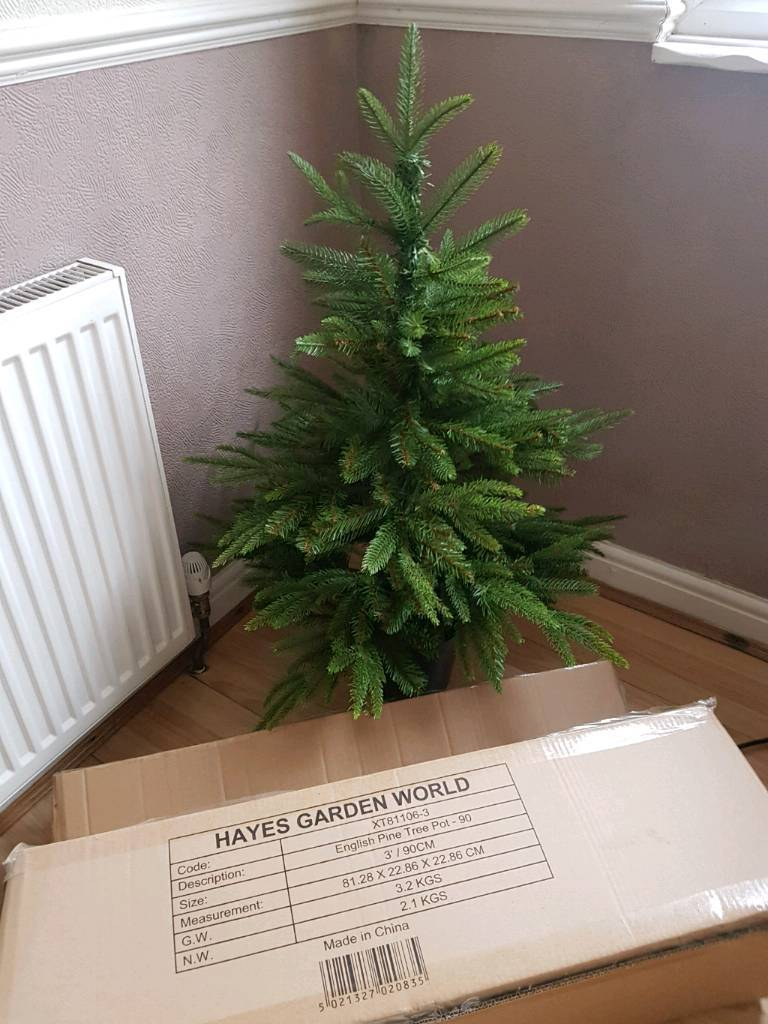 HAYES GARDEN WORLD 3FT POTTED SPRUCE £15