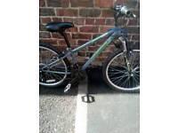 Apollo switch junior mountain bike
