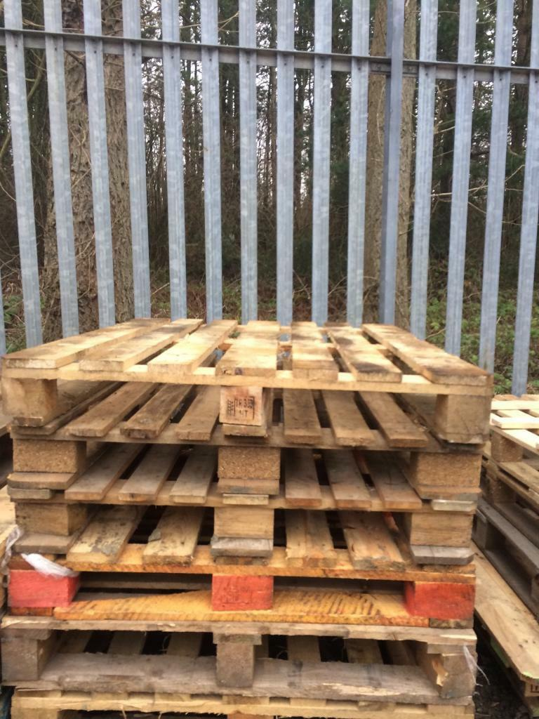 Pallets for salein Dunfermline, FifeGumtree - Pallets for sale 100 cm x 120 cm10 available