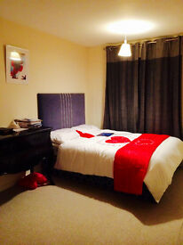 Double Bedroom available for working professionals- Male or Female