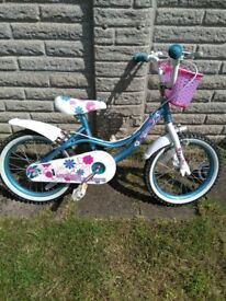 Flowers and hearts bike 16""